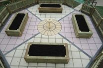 Garden Patio & Paving – 3X01